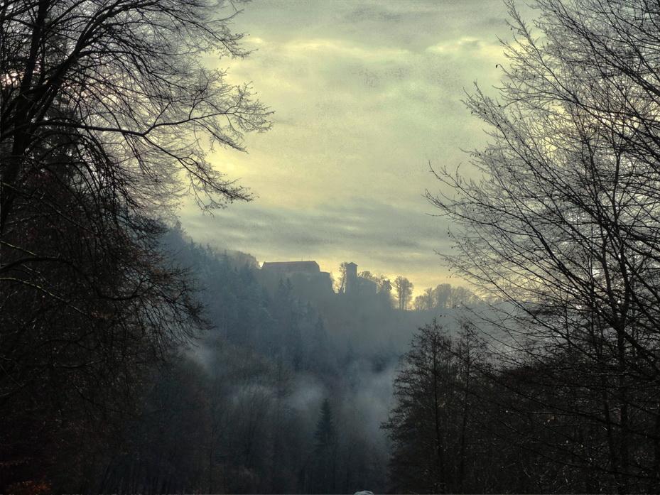 Blick aus dem Polenztal zur Burg Hohnstein